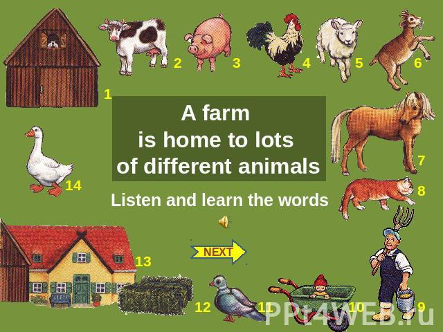 A farm is home to lots of different animals Listen and learn the words NEXT