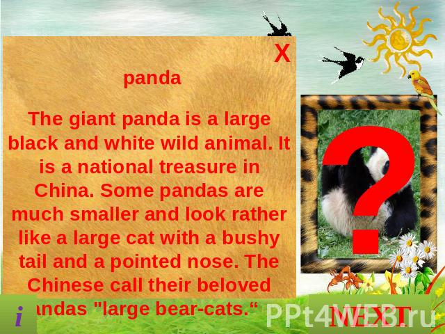 pandaThe giant panda is a large black and white wild animal. It is a national treasure in China. Some pandas are much smaller and look rather like a large cat with a bushy tail and a pointed nose. The Chinese call their beloved pandas