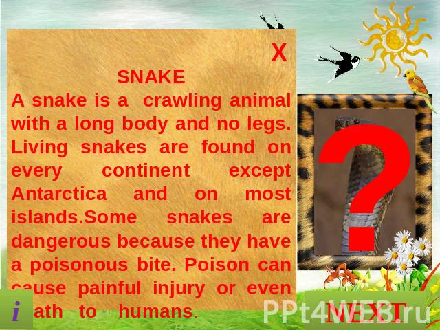 SNAKE A snake is a crawling animal with a long body and no legs. Living snakes are found on every continent except Antarctica and on most islands.Some snakes are dangerous because they have a poisonous bite. Poison can cause painful injury or even d…