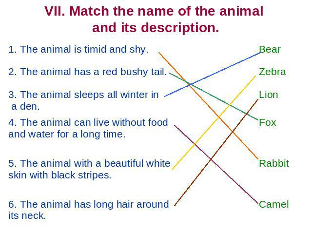 VII. Match the name of the animal and its description. 1. The animal is timid and shy. 2. The animal has a red bushy tail3. The animal sleeps all winter in a den. 4. The animal can live without food and water for a long time. 5. The animal with a be…