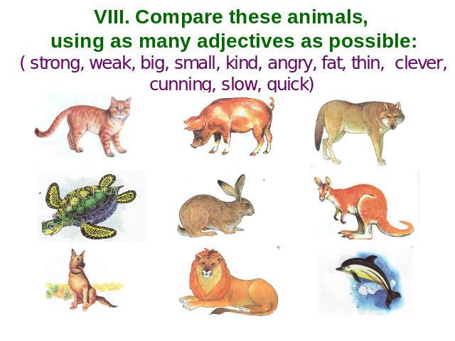 VIII. Compare these animals, using as many adjectives as possible: ( strong, weak, big, small, kind, angry, fat, thin, clever, cunning, slow, quick)