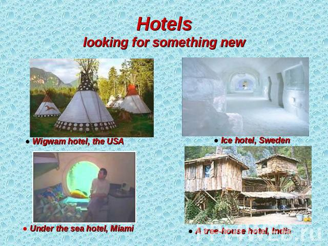 Hotelslooking for something new ● Wigwam hotel, the USA ● Under the sea hotel, Miami ● Ice hotel, Sweden ● A tree-house hotel, India