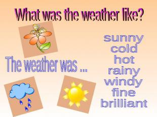 What was the weather like? sunny cold hot rainy windy fine brilliant The weather