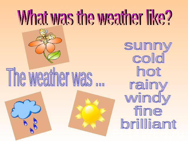 What was the weather like? sunny cold hot rainy windy fine brilliant The weather was ...