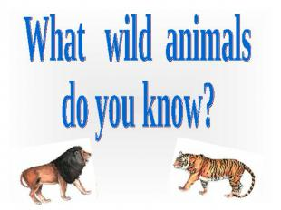 What wild animals do you know?