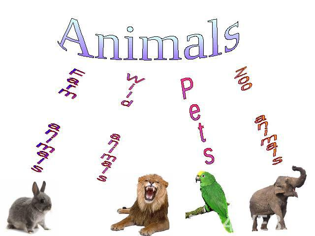 Animals Farm animals Wild animals Pets Zoo animals