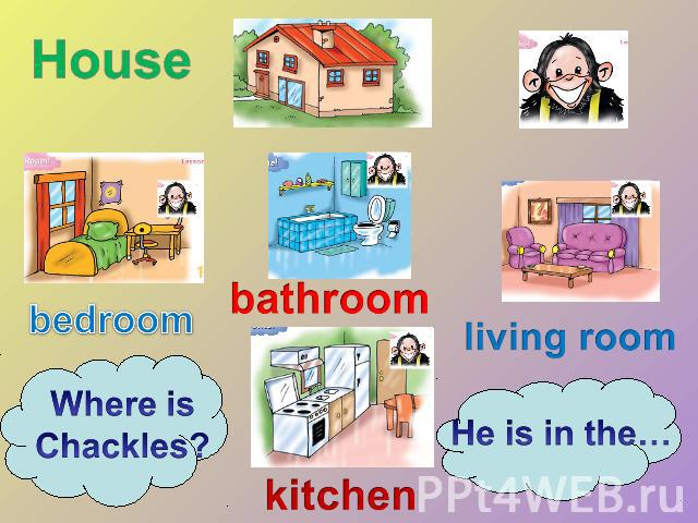 House bedroom Where is Chackles? bathroom kitchen living room He is in the…