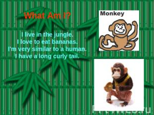 What Am I? I live in the jungle.I love to eat bananas.I'm very similar to a huma