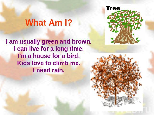 What Am I? I am usually green and brown.I can live for a long time.I'm a house for a bird.Kids love to climb me.I need rain.