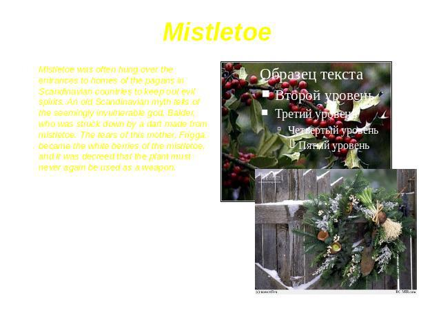 Mistletoe Mistletoe was often hung over the entrances to homes of the pagans in Scandinavian countries to keep out evil spirits. An old Scandinavian myth tells of the seemingly invulnerable god, Balder, who was struck down by a dart made from mistle…