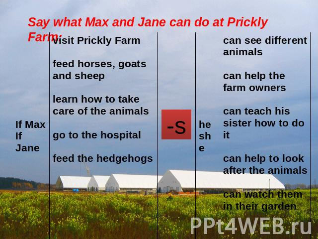 Say what Max and Jane can do at Prickly Farm: