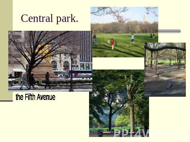 Central park. the Fifth Avenue