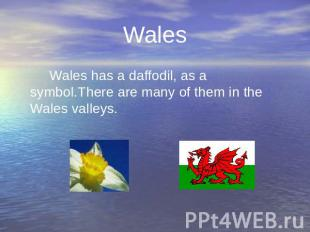 Wales Wales has a daffodil, as a symbol.There are many of them in the Wales vall