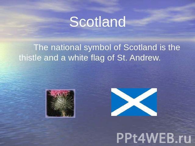Scotland The national symbol of Scotland is the thistle and a white flag of St. Andrew. The national symbol of Scotland is the thistle and a white flag of St. Andrew.