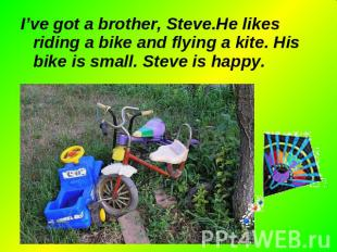 I've got a brother, Steve.He likes riding a bike and flying a kite. His bike is