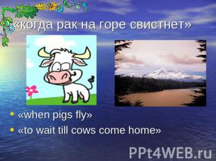 «когда рак на горе свистнет» «when pigs fly»«to wait till cows come home»