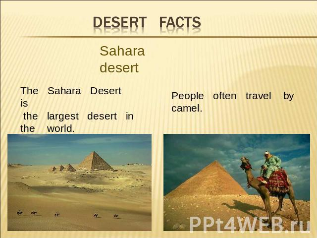 Desert facts Sahara desertThe Sahara Desert is the largest desert in the world. People often travel bycamel.