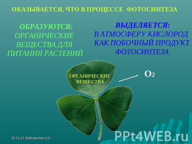 Какие главные и побочные продукты фотосинтеза