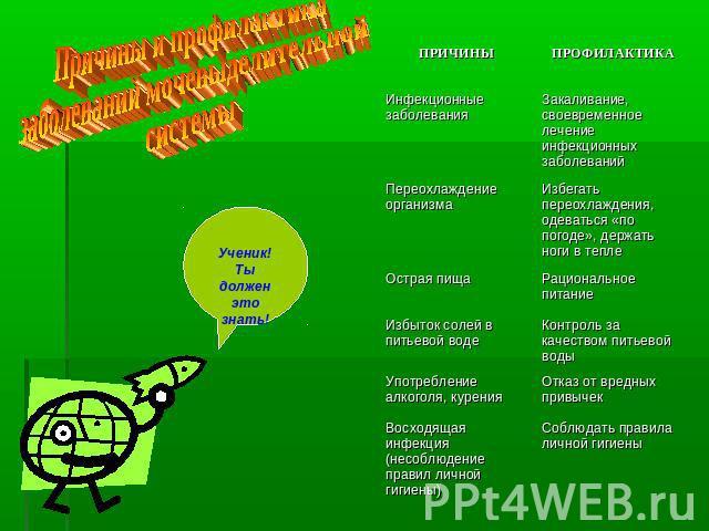 Причины заболевания мочевыделительной системы