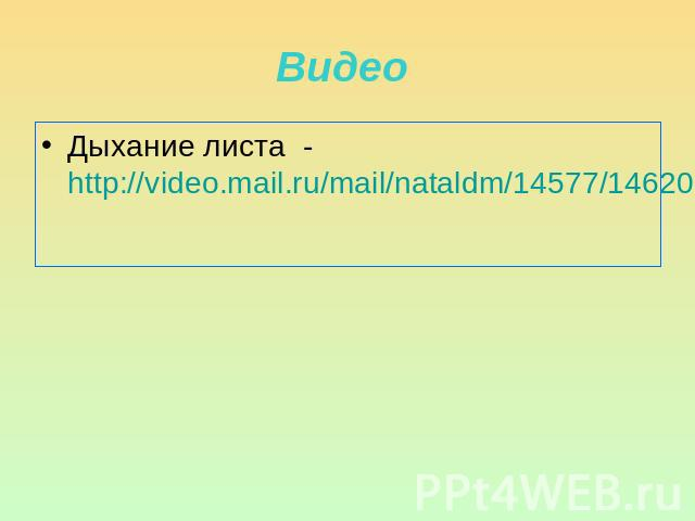 Дыхание листа - http://video.mail.ru/mail/nataldm/14577/14620.html