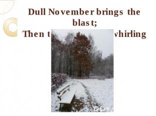 Dull November brings the blast;Then the leaves are whirling fast.