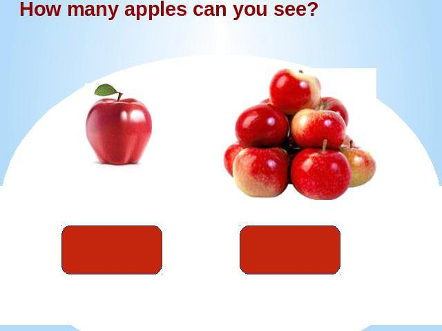 How many apples can you see?