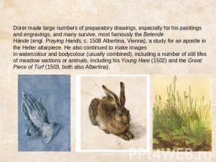 Dürer made large numbers of preparatory drawings, especially for his paintings a