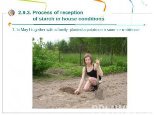 2.9.3. Process of reception of starch in house conditions1. In May I together wi