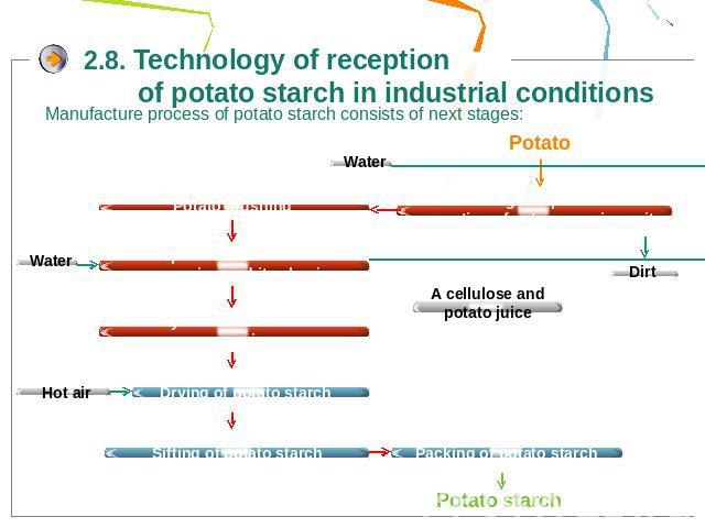 2.8. Technology of reception of potato starch in industrial conditionsManufacture process of potato starch consists of next stages: