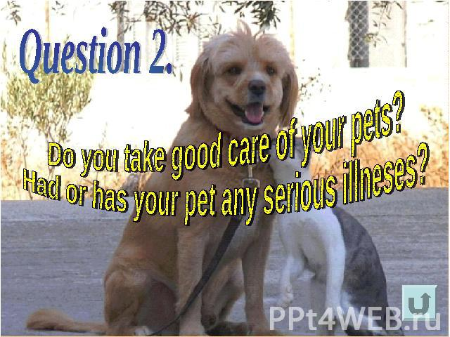 Do you take good care of your pets?Had or has your pet any serious illneses?