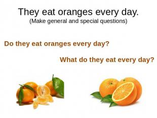 They eat oranges every day.(Make general and special questions)