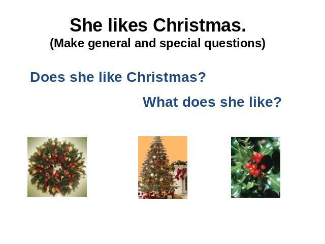 She likes Christmas.(Make general and special questions)