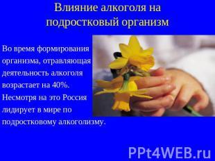 Влияние алкоголизма на организм человека презентация лечение алкоголизма спб бехтерева м.нарвская
