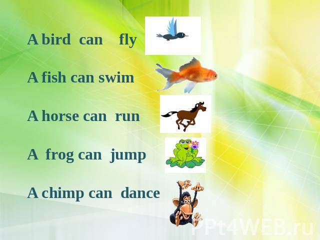 A bird can fly A fish can swim A horse can run A frog can jump A chimp can dance