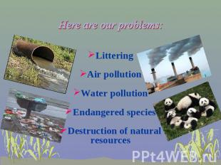 Here are our problems: Littering Air pollution Water pollution Endangered specie