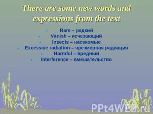 There are some new words and expressions from the text Rare – редкий Vanish – ис