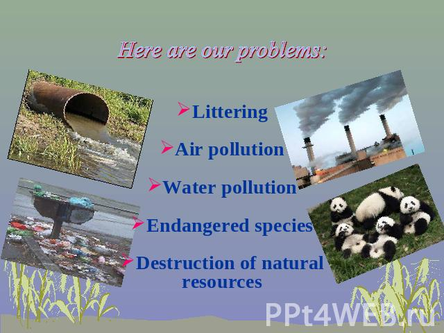 Here are our problems: Littering Air pollution Water pollution Endangered species Destruction of natural resources