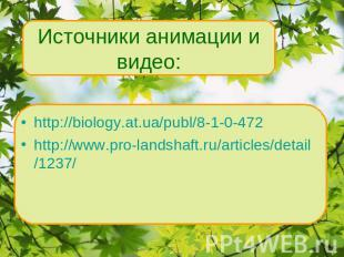 http://biology.at.ua/publ/8-1-0-472 http://www.pro-landshaft.ru/articles/detail/
