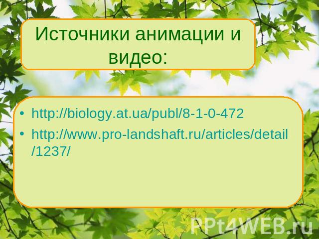 http://biology.at.ua/publ/8-1-0-472 http://www.pro-landshaft.ru/articles/detail/1237/