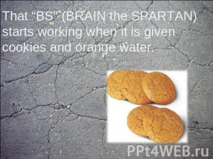 "That ""BS"" (BRAIN the SPARTAN) starts working when it is given cookies and orange"
