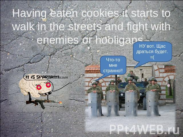 Having eaten cookies it starts to walk in the streets and fight with enemies or hooligans.