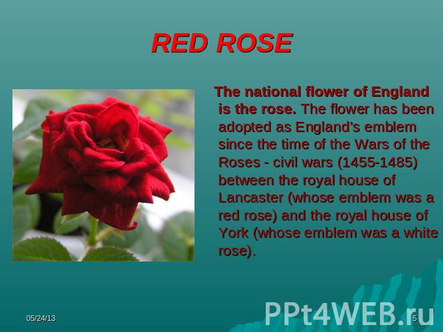 essay on flowers in english