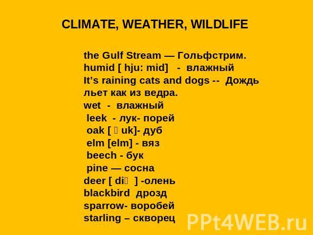 CLIMATE, WEATHER, WILDLIFEthe Gulf Stream — Гольфстрим.humid [ hju: mid] - влажный It's raining cats and dogs -- Дождь льет как из ведра.wet - влажный leek - лук- порей oak [ әuk]- дуб elm [elm] - вяз beech - бук pine — соснаdeer [ diә ] -оленьblack…