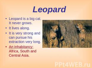 Leopard Leopard is a big cat. It never grows. It lives along.It is very strong a