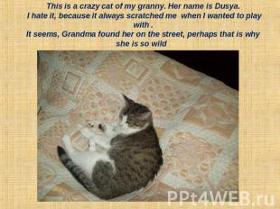 This is a crazy cat of my granny. Her name is Dusya. I hate it, because it alway