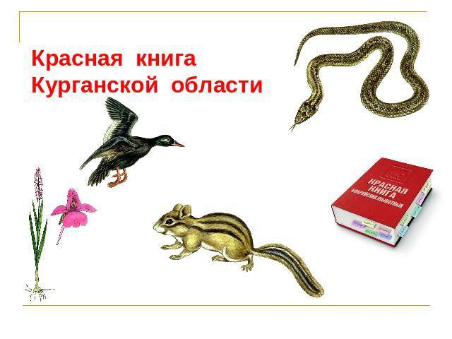 Скачать бесплатно красную книгу курганской области