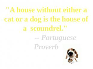 """A house without either a cat or a dog is the house of a  scoundrel."""