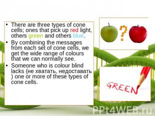 There are three types of cone cells; ones that pick up red light, others green a