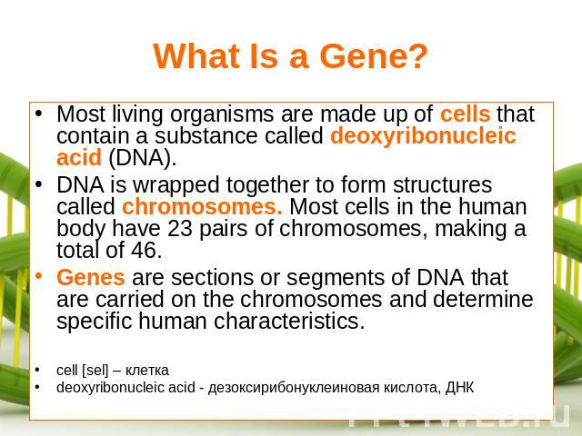 What Is a Gene? Most living organisms are made up of cells that contain a substance called deoxyribonucleic acid (DNA).DNA is wrapped together to form structures called chromosomes. Most cells in the human body have 23 pairs of chromosomes, making a…