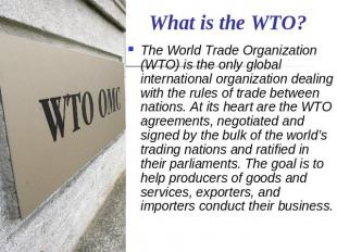 What is the WTO? The World Trade Organization (WTO) is the only global internati